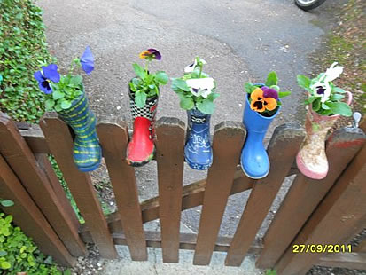 Photo of our welly boot planting activity.